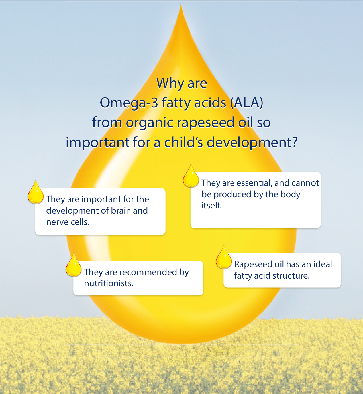 why is omega 3 from rapeseed oil important hipp organic. Black Bedroom Furniture Sets. Home Design Ideas